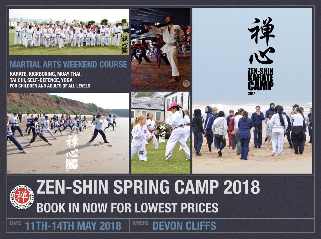 Devon 2018 Poster